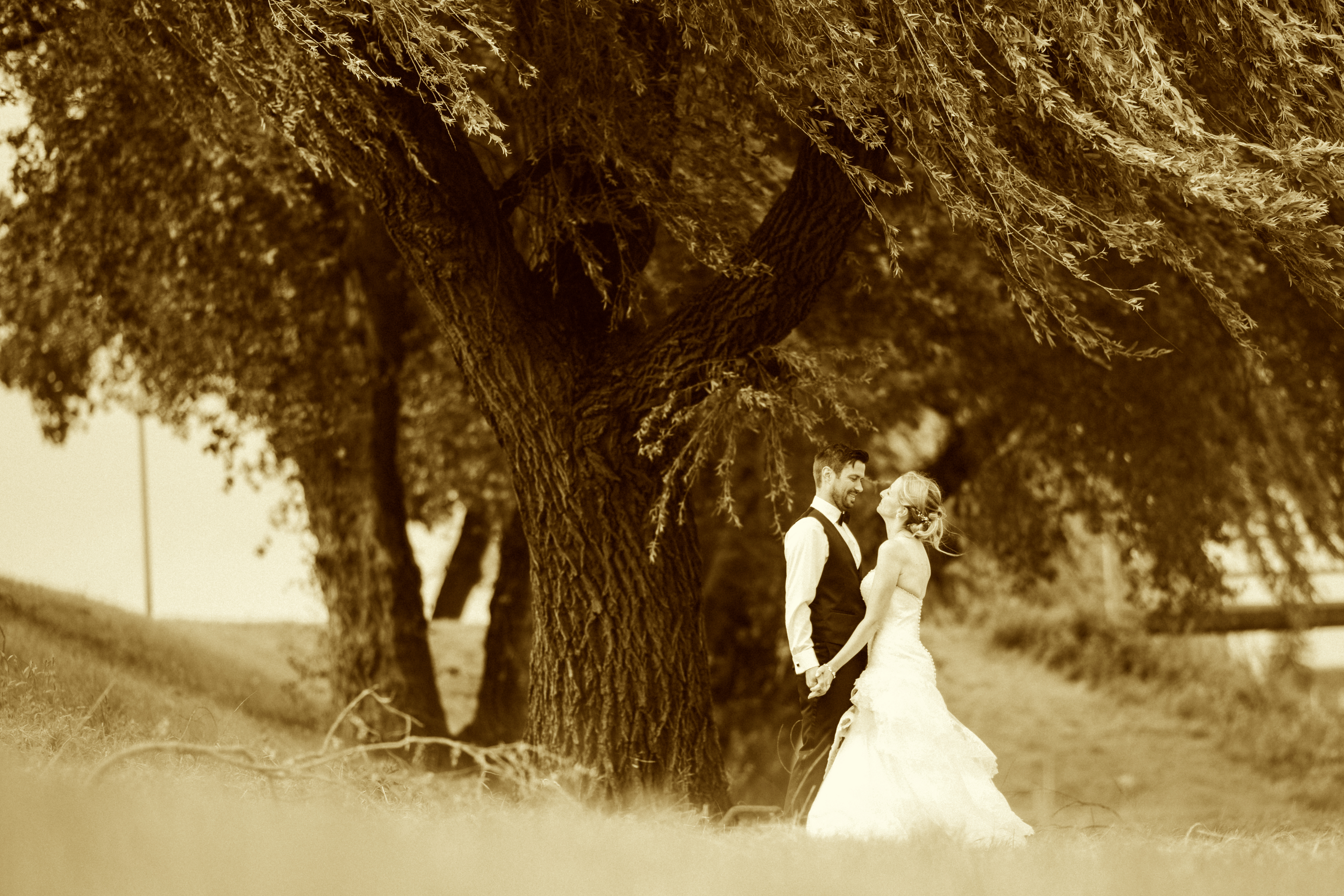 Herzlichen Glückwunsch zur Hochzeit!